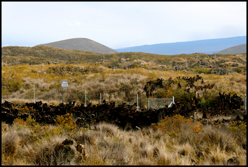 RC-2433: An example of a fenced enclosure on Pōhakuloa Training Area within which non-native feral goats have been removed. This project will assess the effects of ungulate removal on native ecosystems.
